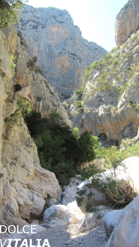 Gorropu canyon entrance, walls in the distance are more than 400 m high