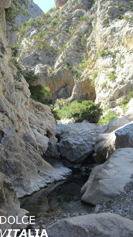 Gorropu canyon entrance with cold water pouring around